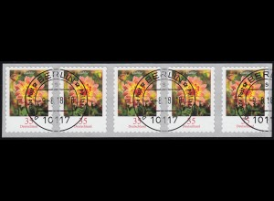 2514 Dahlie 35 Cent 2018 sk 5er-Streifen aus 10000er GERADE Nummer ET-O 9.8.18