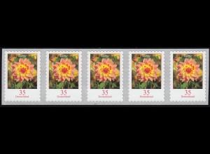 2514 Dahlie 35 Cent 2018 sk 5er-Streifen aus 10000er UNGERADE Nummer **