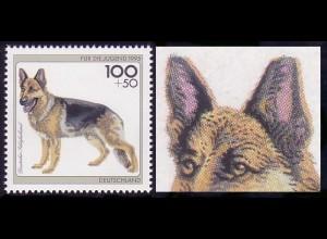 1799I Schäferhund: Rasterpunkte an den Ohren fehlend, Felder 6-10 **