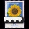 2434I Blume 95 Cent mit PLF I: blauer Strich im Unterrand RECHTS, **