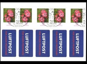 FB 3 Kartäusernelke 2009, Folienblatt 5x2716, mit Luftpost-Aufkleber, EV-O Bonn