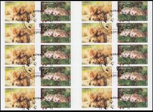 FB 36 Tierkinder: Fuchs und Igel, Folienblatt mit 10x 3053-3054, EV-O Bonn