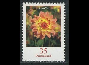 2505 Blumen 35 C Dahlie **