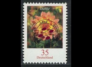 2505 Blumen 35 C Dahlie O