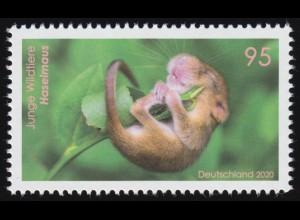 3563 Junge Wildtiere: Haselmaus, ** postfrisch