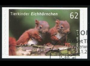 3129 Tierkinder: Eichhörnchen, selbstklebend, auf neutraler Folie, O