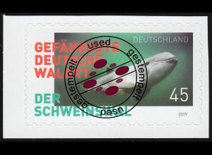 3437 Der Schweinswal, selbstklebend aus FB 84, EV-O Bonn 2.1.19
