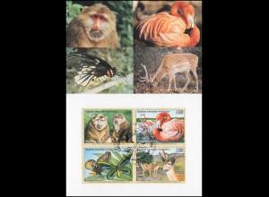 MK 54 von UNO Genf 330-333 Gefährdete Arten Fauna 1998, amtliche Maximumkarte