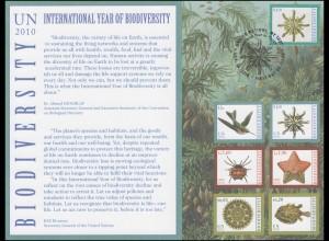 UNO Erinnerungskarte EK 65 Jahr der Biodiversität 2010, NY-FDC 18.10.2010